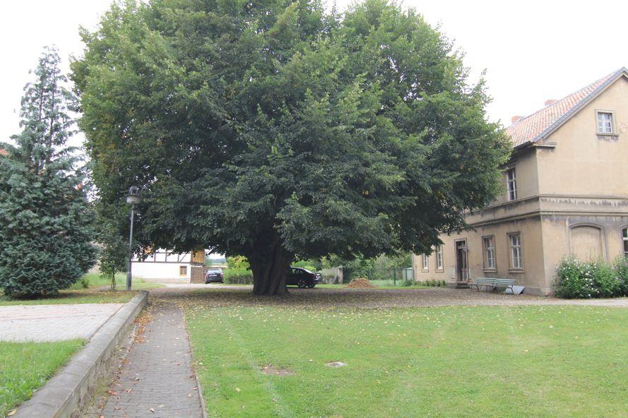 Umnutzung des ehem. Kantoratsgebäudes zu einer kirchlich-kommunalen Begegnungsstätte in Vogelsdorf (2. BA)